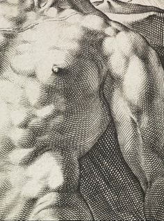 Apollo, (1588) by Hendrick Goltzius :: The Collection :: Art Gallery NSW