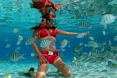 Snorkeling is something I have always dreamed of doing!!!  Sapphire Beach, Saint Thomas