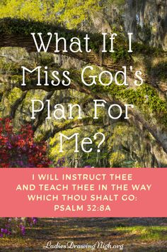 Is finding God's will a guessing game? A hit or miss proposition? I so much want to live the life God intends for me and to accomplish, in His name and for His glory, all that He wants me to. But sometimes I've struggled to know what that is. Click through to learn how you can be sure not to miss God's plan for you. | God's plan | God's will | Bible study Genesis | Ladies Bible study |