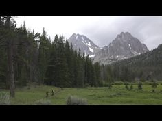 Trail Hunter - Sun Valley - YouTube