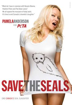 Proud Canadian Celebs Blast Seal Slaughter. What do Ryan Reynolds, Pamela Anderson, and Sarah McLachlan have in common? Compassion for seals. Find out what these celebs have to say about Canada's seal slaughter, and learn how you can help seals, too! SPEAK UP FOR SEALS