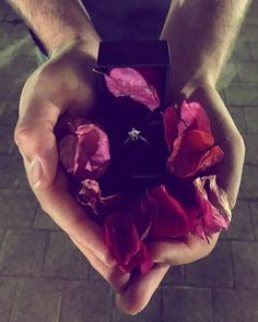 Marriage proposal  Bougainvillea