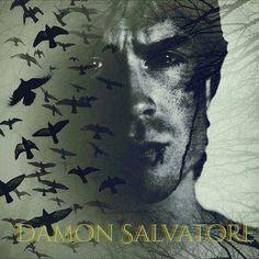 Damon Salvatore Damon Salvatore, Ian Somerhalder, Delena, Vampire Diaries, Tv Series, Addiction, Movies, Movie Posters, Fictional Characters