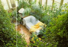 Terence Conran : Decorating with Plants