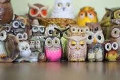 Owls galore, oh I want them all