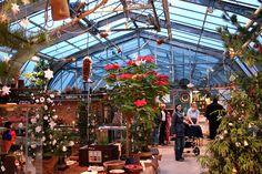 Vánoční výstava v Botanické zahradě na Slupi v Praze 2014. Outdoor, Outdoors, Outdoor Games, Outdoor Living