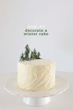 How to: Decorate a Winter Cake with mini forest of trees by Sara of Matchbox Kitchen.