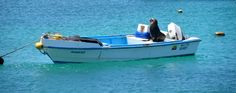 Sea lions love to lie on boats. Don't know how the fishermen use their boats then...  #Galapagos