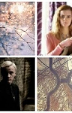 Read chapter three from the story The Contract (Dramione) by (Nawel) with reads. Dramione Fanfiction, Draco And Hermione Fanfiction, What U Want, Hermione Granger, Grumpy Cat, Book Worms, Mona Lisa, Harry Potter, Marriage