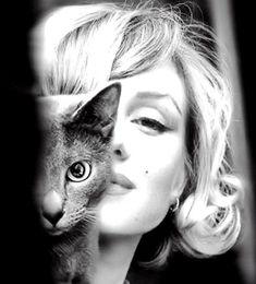 Marilyn Monroe loving her cat.