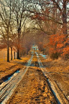 Country road (near Kansas City, Missouri) by Greg ODonnell