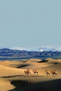 Gobi Desert, China and southern Mongolia. Landscape Photography, Nature Photography, Travel Photography, Mongolian Desert, Beautiful World, Beautiful Places, Deserts Of The World, Desert Colors, Desert Life