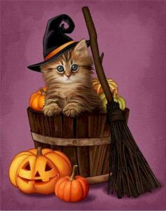 Halloween kitten in a bucket of pumpkins with a Jack-o-Lantern pumpkin and a broomstick dibujos gatos Retro Halloween, Vintage Halloween Decorations, Halloween Tags, Halloween Pictures, Holiday Pictures, Holidays Halloween, Halloween Themes, Halloween Crafts, Happy Halloween