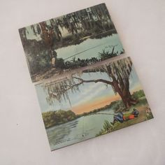 Vintage Florida Negro Black Americana Fishing Suwannee River Postcard Lot Of 2