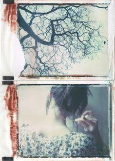 Under the Cherry Tree | emilie79*
