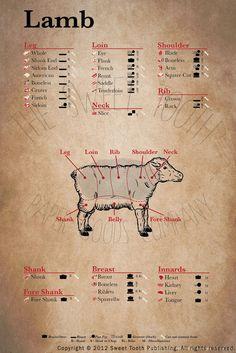 American Lamb Cuts Posters