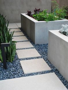 cast concrete planters with colorful plantings to add interest and why not sansevera? It's CA!