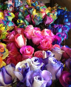 Rainbow Roses | Rainbow Roses Galore! | FiftyFlowers - Wedding Flower Reviews | Fifty ...