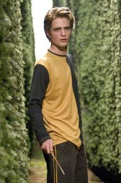 Robert Pattinson Role: Cedric Diggory Film: Harry Potter and the Goblet of Fire Harry Potter and the Order of the Phoenix heroic Hufflepuff Quidditch team Seeker is Hogwarts' other Triwizard Champion, who meets his demise at Lord Voldemort's orders. Harry Potter Goblet, Arte Do Harry Potter, Harry James Potter, Harry Potter Cast, Harry Potter Characters, Harry Potter World, Robert Pattinson, Edward Cullen, Goblet Of Fire