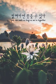 67 Trendy Ideas For Quotes Lyrics Smile Korea Wallpaper, K Wallpaper, Wallpaper Quotes, Message Wallpaper, Cartoon Wallpaper, Disney Wallpaper, Wallpaper Backgrounds, K Quotes, Lyric Quotes