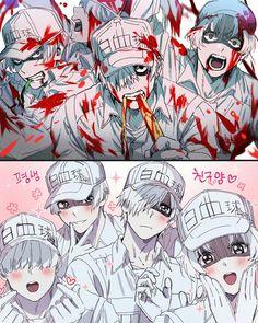 Read from the story Imagenes Y Yaoi de Hataraku saibou by (HarunoYagami) with reads. Anime Love, Fan Art Anime, All Anime, Anime Guys, Otaku, Manga Anime, Bendy Y Boris, Anime Lindo, Retro Girls