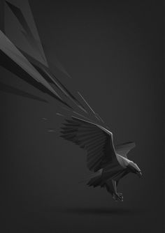 Animal illustrations by Ilya Andreev, via Behance
