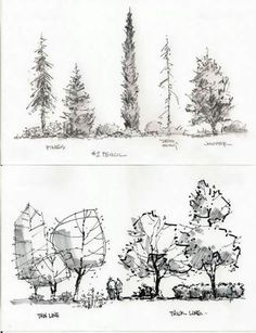 Best 25 Landscape architecture drawing ideas in tree architecture drawing plan collection - ClipartXtras Landscape Sketch, Landscape Drawings, Landscape Plans, Architecture Drawings, Landscape Design, Architecture Design, Classical Architecture, Ancient Architecture, Sustainable Architecture