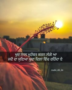Sweet Couple Quotes, One Word Quotes, Gurbani Quotes, Snap Quotes, Karma Quotes, Reality Quotes, Mood Quotes, Life Quotes, Qoutes