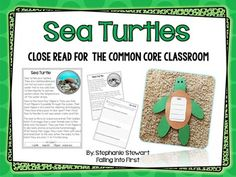 This is a perfect addition to a unit on Oceans or Animals! Included with this craftivity is a fact finding component as well as a graphic organizer, both allowing your little ones to show you what they have learned about sea turtles!   Included in this kit  *Baby sea turtle pattern *Fact boxes *Sea Turtles graphic oragnizer  I hope you can use this in your classroom!