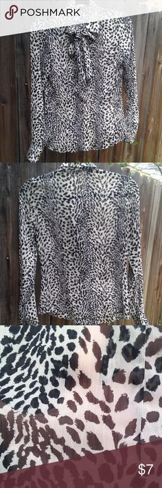 Semi-sheer animal print necktie pussy bow blouse Breezy animal print button-down blouse has domed gold buttons and semi-sheer fabric, good for layering or wearing by itself with neutral undergarments. Sleeves are cuffed. Long enough to tuck in to a skirt or dress pants. Size M. Worn twice. Sole Mio Tops Blouses