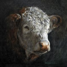Polled Hereford by Gregory Karas Hereford Cattle, Bull Painting, Cow Pictures, Showing Livestock, Farm Art, Cute Cows, Cow Art, Bull Riding, Mundo Animal