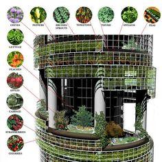 Vertical Farm 1 by ubcgrs #verticalfarming