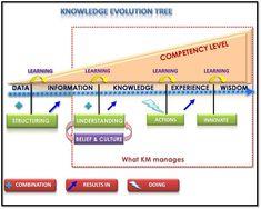 knowledge management wisdom - Buscar con Google