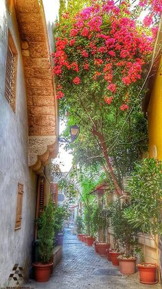 Cute old streets of #Mina #Tripoli By Nay Peltekian #Lebanon