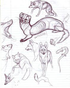 Eventually i gave up by nikkiburr sketch drawings, animal sk Animal Sketches, Animal Drawings, Cool Drawings, Drawing Sketches, Nature Sketch, Art Studies, Creature Design, Art Sketchbook, Totoro