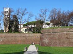 Ma come saranno le mura di Lucca?