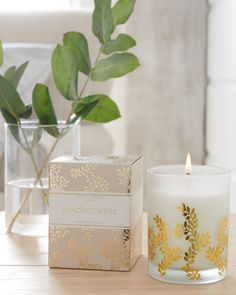 Infuse your home with a fresh coastal breeze. Fruity notes of sweet ripe melon and crunchy apple entwine with seaside florals and rest on a base of creamy sandalwood.