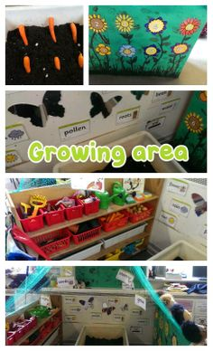 New growing area in our nursery,