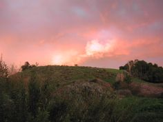 Pink Clouds at the Preserves