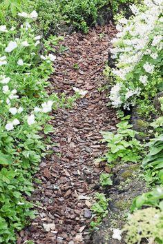 Kapea hakepolku sopii erityisesti istutusten väliin tai metsäiselle tontille. Hake joustaa jalan alla mukavan pehmeästi. Kuva Annika Christensen