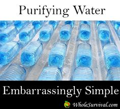SODIS Method To Purify Water Click To Read: http://www.wholesurvival.com/water/water-purification/24-sodis-method-of-purifying-water
