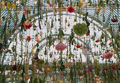 Rebecca Louise Law is an Installation Artist using natural materials, namely flora. Law's installations are designed to dry as permanent sculptures.