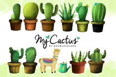 Cactus by DoubleColors on @creativemarket