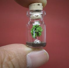 Tiny world in a bottle. Everything is better in miniature.
