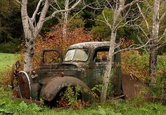 #Beautiful abandoned #Truck, slipping into #Nature. #Classic #Beauty #RustinPeace