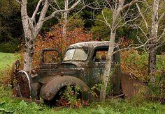 #Beautiful abandoned #Truck, slipping into #Nature. #Classic #Beauty #RustinPeace