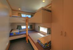 There's plenty of room for the whole family here at Narooma Easts Holiday Park! Holiday Park, Bunk Beds, Room, Furniture, Home Decor, Bedroom, Decoration Home, Loft Beds, Room Decor