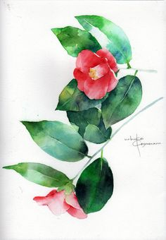 TSUBAKI( Camellia) is a flower representing the winter of Japan.