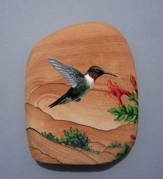 Hummingbird hand painted on sandstone by Greta Schneider