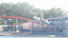 Miles Per Hour, Seaworld Orlando, Ice Breakers, Sea World, Roller Coaster, Fair Grounds, Fun, Travel, Viajes